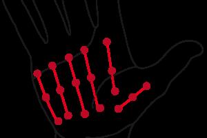mains-internes2