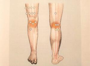 acupression genou